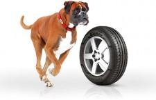Nouveau pneumatique Kleber Citilander, All seasons pour SUV